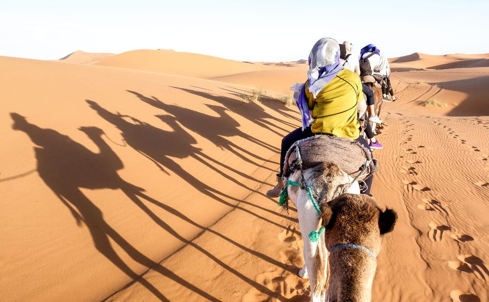 Boas notícias de 2020 para renovar as esperanças: caravana no Egito.